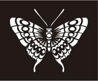 butterfly-37.jpg
