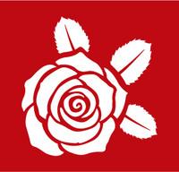 rose-13.jpg