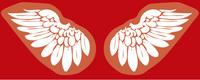 wings-07jpg.jpg