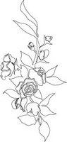 Bridal-rose-07.jpg