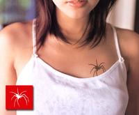 Spider-03.jpg