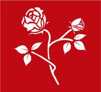 Rose-18.jpg