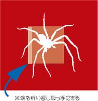 Spider-02.jpg
