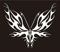 butterfly-34.jpg