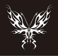butterfly-35.jpg