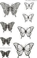 Seminar-butterfly.jpg