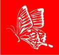 butterfly-44.jpg
